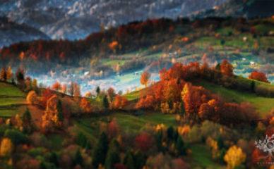 Transilvanijske planine
