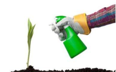 Napravite prirodne pesticide