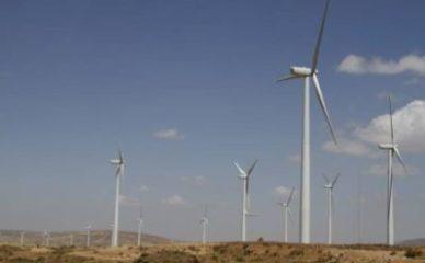 Ulaganje u vetroparkove podstiče domaće gradjevinarstvo